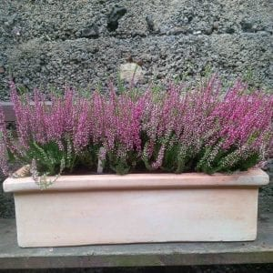 terracotta window box