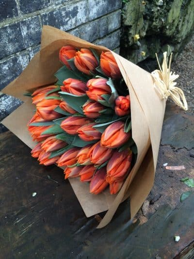 Tulips of the Day Battersea Flower Station