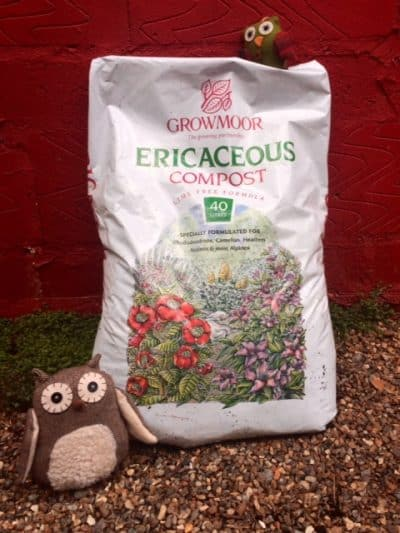 Buy Ericaceous Compost Online for London Delivery