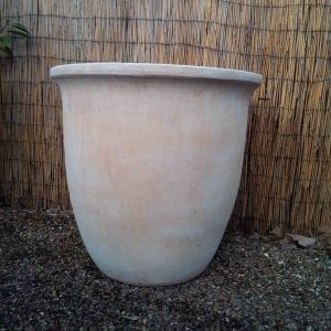 Large Terracotta Pot Planter from Battersea Flower Station Garden Centre and Florist