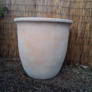 Large Terracotta Pot Planter from Battersea Flower Station Garden Centre and Florist
