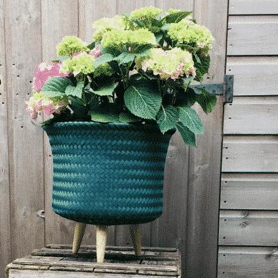 Hand Made Woven Pot Green