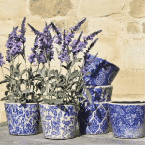 Patterned Indoor Pot Blue