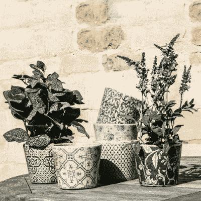 Patterned Indoor Pot Green