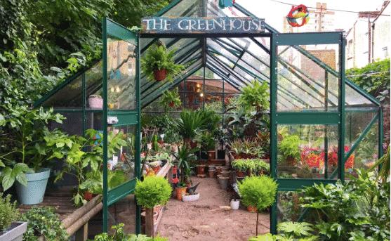 The Telegraph – London's Best Garden Centres!