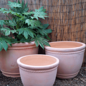 terracotta rope pot