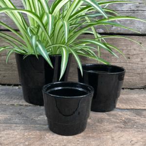 black ceramic pots indoor