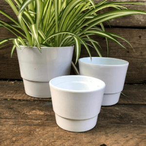 white ceramic pots indoor